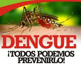 cartel-dengue